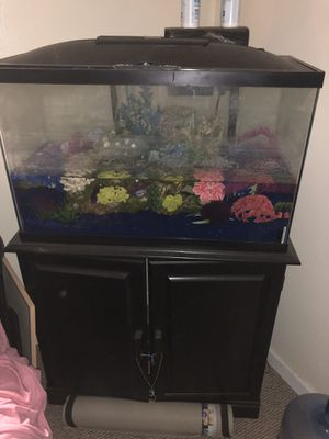 40 gallon aquarium for Sale in Los Angeles, CA