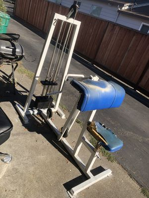 Commercial arm curl machine for Sale in Hayward, CA