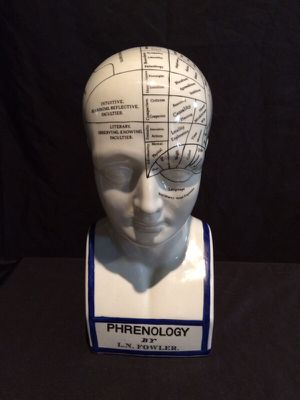 Old Phrenology model for Sale in Saint Louis, MO