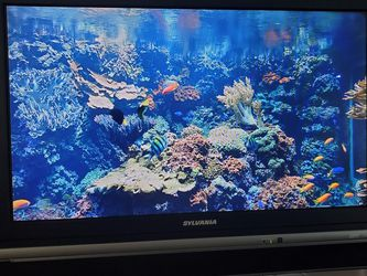 """32"""" Flat Screen TV With Remote Control for Sale in Orlando,  FL"""
