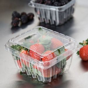 Pint Vented Clamshell Produce Container for Sale in Pembroke Pines, FL