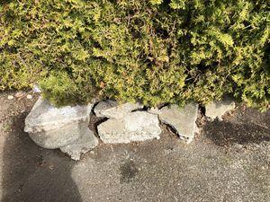 Free concrete for Sale in Everett, WA