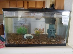 Aquarium with filter and decorations for Sale in Galveston, TX