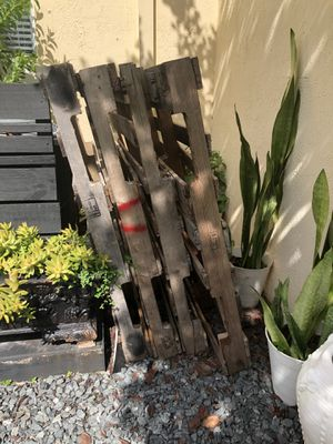 Pallets for Sale in Sunrise, FL