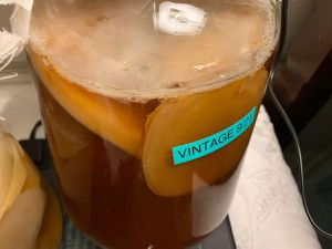 Scobys for Kombucha Brewing; 5 different species available, for Sale in Tigard, OR