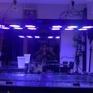 Reef Aquarium Led 48 Inches for Sale in Seattle, WA
