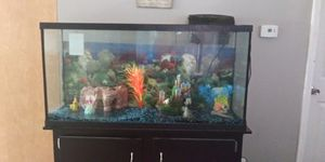 Fish tank for Sale in Evansville, IN