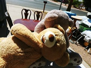 Giant 5ft. Teddy Bear and Large Bull Dog that unfolds to a pillow for Sale in Phoenix, AZ