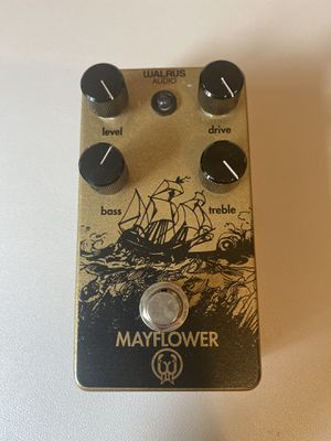Walrus Audio Mayflower Overdrive Pedal (Gold) for Sale in Bothell, WA