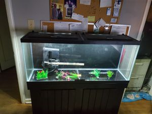 55 gallon aquarium with everything included for Sale in Norfolk, VA