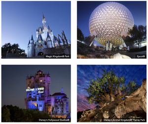 Disney World Magical Experiences for Sale in Orlando, FL
