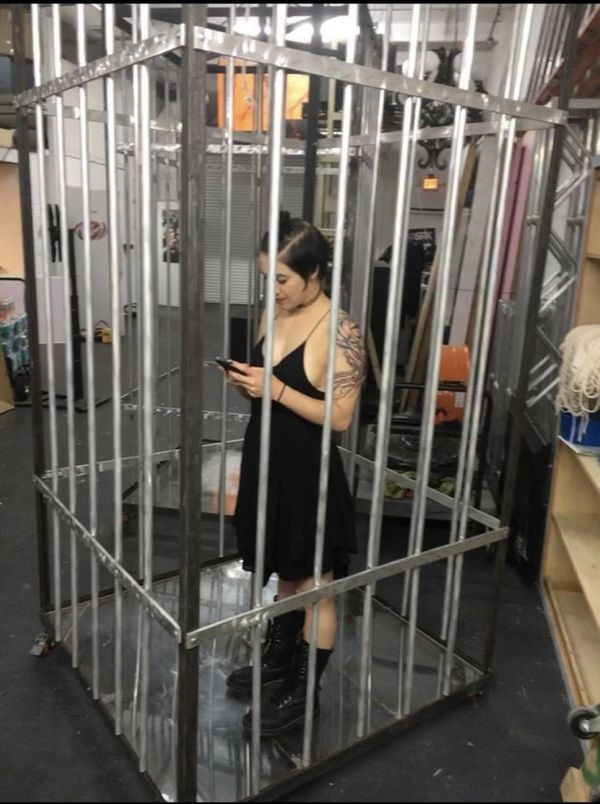 2 Full Size GoGo Cages