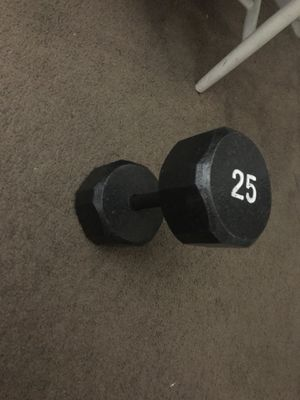 25pound non rust weight for Sale in Long Beach, CA
