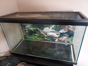 20 gallon lizard/fish tank with metal cover $40 obo for Sale in Puyallup, WA