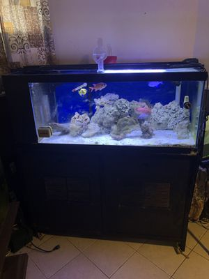 120 Gallon saltwater fish tank for Sale in Cambridge, MA