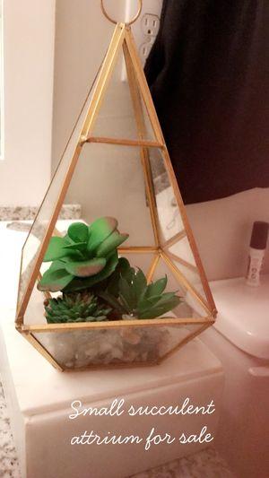 Succulent atrium for sale for Sale in Atlanta, GA