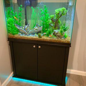 Aquarium. 45 Gallon Aquarium Tank And Everything for Sale in West Sacramento, CA