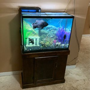 Fish Tank for Sale in Winter Springs, FL