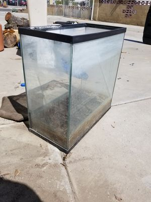 20 gallon fish tank needs to be cleaned for Sale in San Jacinto, CA