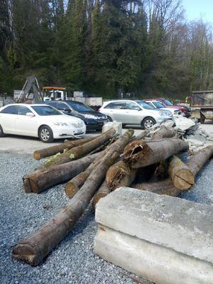 Firewood for Sale in Seattle, WA
