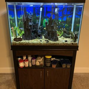 Community Aquarium With Some Really Fun Fish for Sale in Puyallup, WA