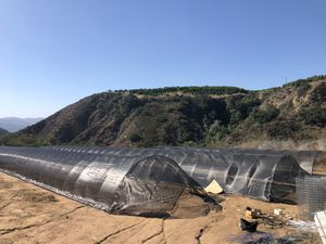 Round Greenhouses/Canopies 3 total for Sale in Pala, CA