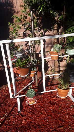 Mothers day Gift Best gift One of a kind window frame Planter great for indoor out door plants fits 10 pots for Sale in Fresno, CA