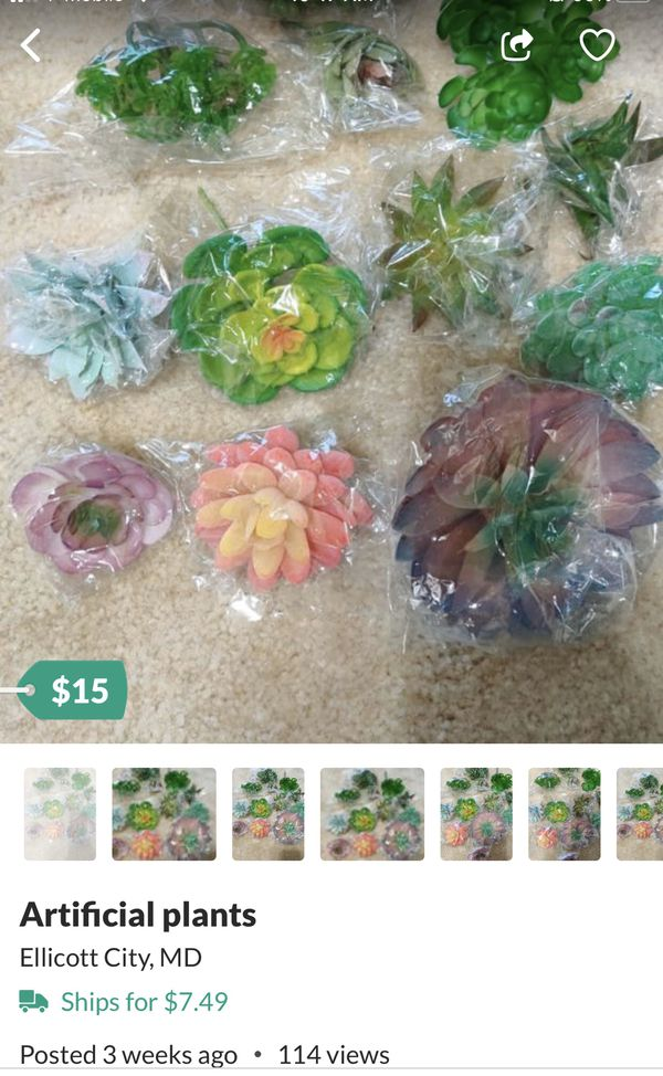 Small succulent pots.... and artificial plants... all are included