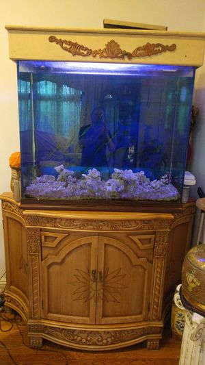 Salt water aquarium with all the filter and staff for Sale in Los Angeles, CA