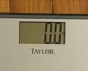 Digital Bathroom Scale-TAYLOR brand for Sale in Atlanta, GA