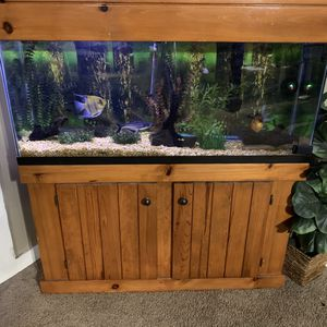 """55"""" Fish Tank for Sale in Winter Haven, FL"""