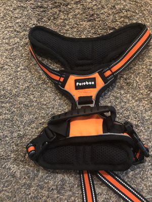 Medium dog harness for Sale in Moville, IA