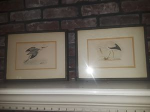 White Stork and Heron Pictures for Sale in Decatur, GA