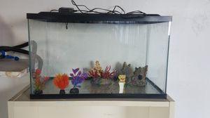 Aqua-Culture 10-gallon aquarium for Sale in El Cajon, CA