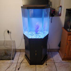 Aquarium for Sale in Chicago, IL