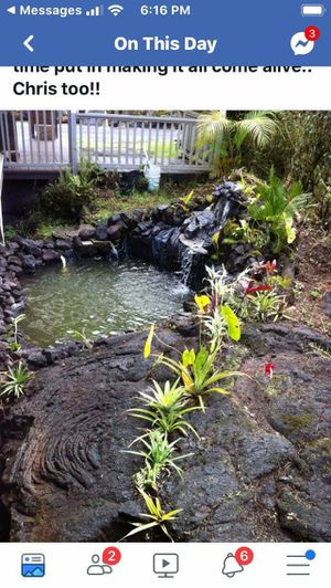 Ponds big or small we do them all for Sale in Hobe Sound, FL