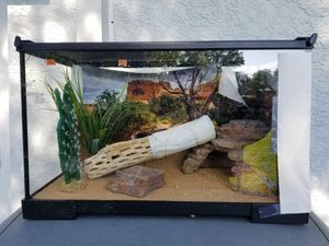 Reptile enclosure for Sale in Safety Harbor, FL