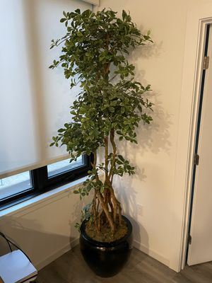 """Fake Plant 7'5"""" for Sale in Portland, OR"""