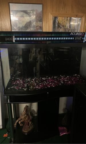 Fish tank for Sale in Millington, MI