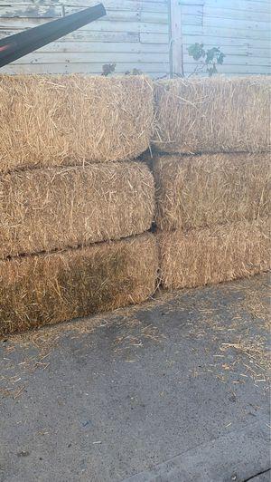 Hay for Sale in Pico Rivera, CA