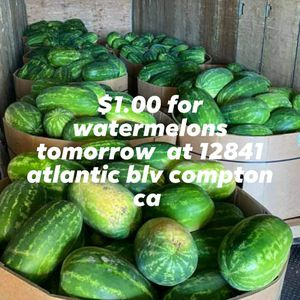 Watermelons for Sale in E RNCHO DMNGZ, CA