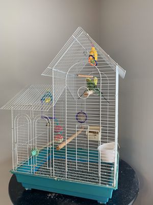 Bird cage with Two free birds all included for Sale in Acworth, GA