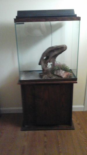 30 Gallons Fish Tank with Stand for Sale in St. Louis, MO