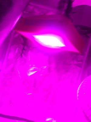 LED GROW TENT WITH EVERYTHING YOU NEED for Sale in Lake Park, FL