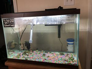 Fish and fish tank for Sale in Rock Hill, SC