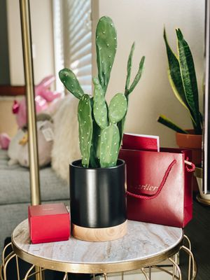 Cactus Plant (Fake) for Sale in Redlands, CA