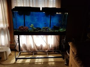 55 gallon fish tank with stand and 2 filters, lights and decorative items. Also long hoses for cleaning. for Sale in Cleveland, OH