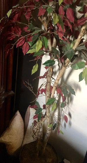 Fake plants for Sale in Lehi, UT