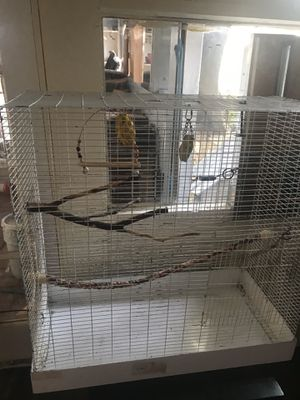 Large Bird Cage for Sale in Denton, TX