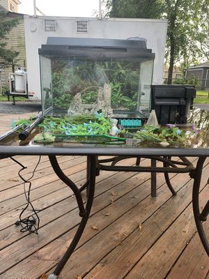 Fish Tank Kit for Sale in Downers Grove, IL